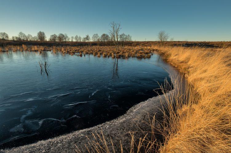 Hohes Venn (Belgien)